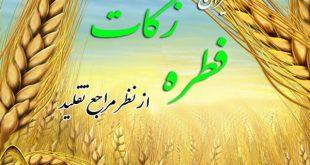 میزان زکات فطره از سوی مراجع تقلید اعلام شد/ تکلیف میهمان شب عید