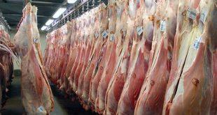 تداوم واردات گوشت تا کاهش قیمت به ۶۵هزار تومان/تدابیر ویژه برای تأمین مرغ و گوشت ماه رمضان